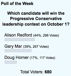 A blog poll shows that Alison Redford is the choice of daveberta.ca readers.