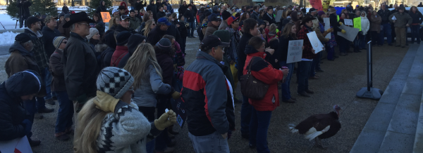 Around 200 protesters gathered at the Alberta Legislature on Nov. 27, 2015.
